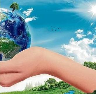 Mondo Migliore Sunday For Future Albero della Vita Bologna