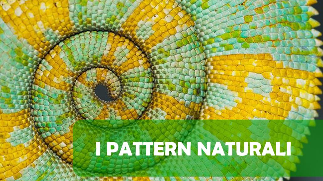Introduzione a La Natura che (ri)connette