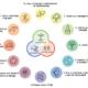 Principi della Permacultura in ambito personale e sociale