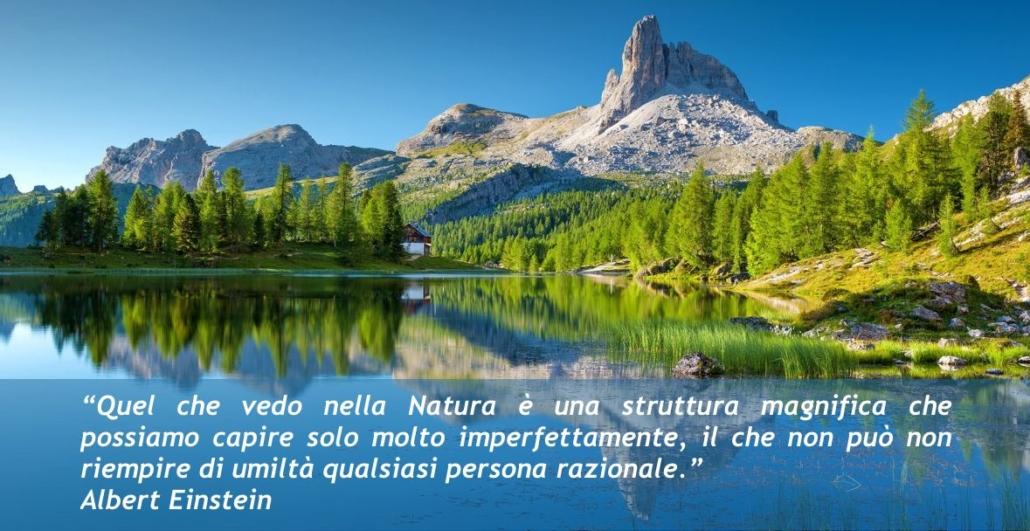 """""""Quel che vedo nella Natura è una struttura magnifica che possiamo capire solo molto imperfettamente, il che non può non riempire di umiltà qualsiasi persona razionale."""" Albert Einstein"""